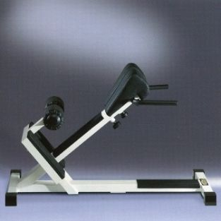 Lower Back Bench Technogym Isotonic Refurbished At Low Price