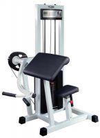 Biceps GymWorks