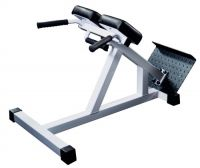 Banc Lombaires Hyperextension GymWorks