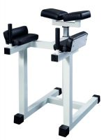 Hyperextension Fessiers GymWorks