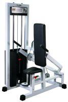 Triceps GymWorks