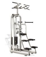 Easy chin/dip M987 Technogym