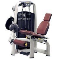 Quadriceps Technogym