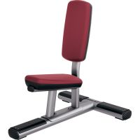 Banc assis Life Fitness